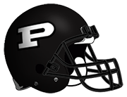 Perry Panthers